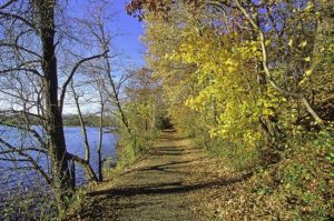 Hamilton-Trenton Marsh, Nov. 2004 (© Jeffrey Worthington)