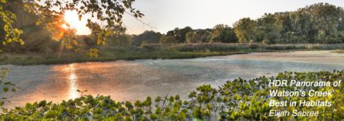 Panorama of Watson Creek