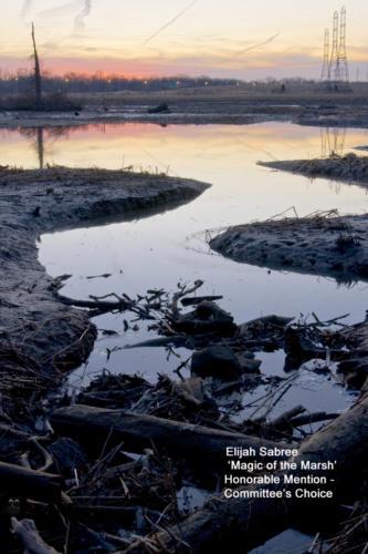 HM SABREE E Magic of the Marsh copy