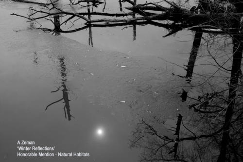 HM Zeman, A Winter reflections